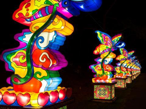 Lanternes colorées alignées à l'occasion de la fête des lanternes chinoise