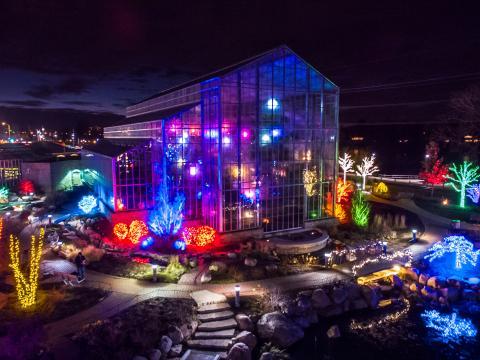 Illuminations nocturnes dans le jardin botanique Nicholas Conservatory and Gardens à l'occasion des fêtes