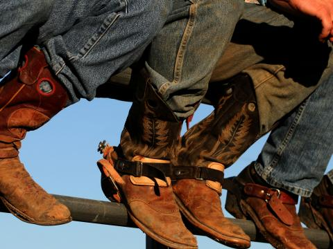 Les bottes de cowboys sont de sortie à la foire western de l'Idaho