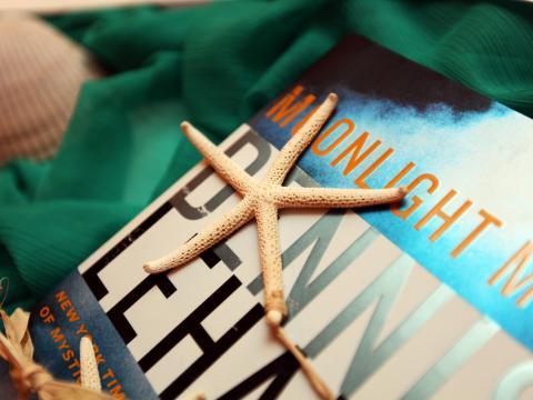 Coquillages et livres au programme de la fête du livre d'Amelia Island, Floride