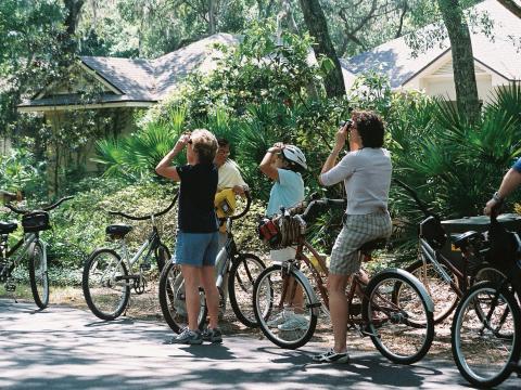 Excursion d'observation de la faune à l'occasion du Wild Amelia Nature Festival à Amelia Island, Floride
