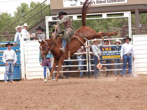 Un spectacle de rodéo, l'une des festivités passionnantes des Durango Fiesta Days