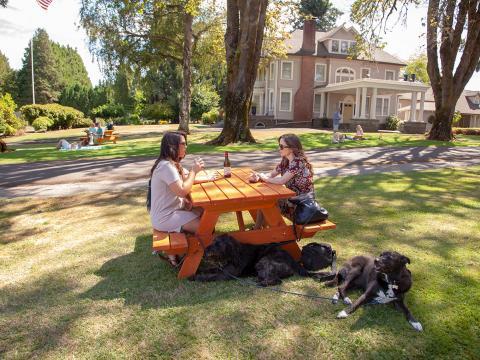 Dégustation de vins lors de l'événement œnologique Canines Uncorked, qui accueille les chiens et leurs maîtres, à Tualatin Valley, dans l'Oregon