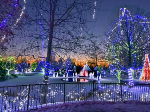 Exposition de lumières au Columbus Zoo and Aquarium dans l'Ohio